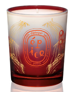Diptyque Spice Candle, 190g