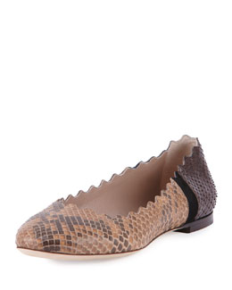 Chloe Lauren Scalloped Python Ballet Flat, Black/Brown