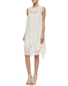 Haute Hippie Sleeveless Lace Trapeze Dress