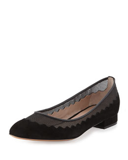 Chloe Suede Tulle-Scalloped Ballet Flat, Black
