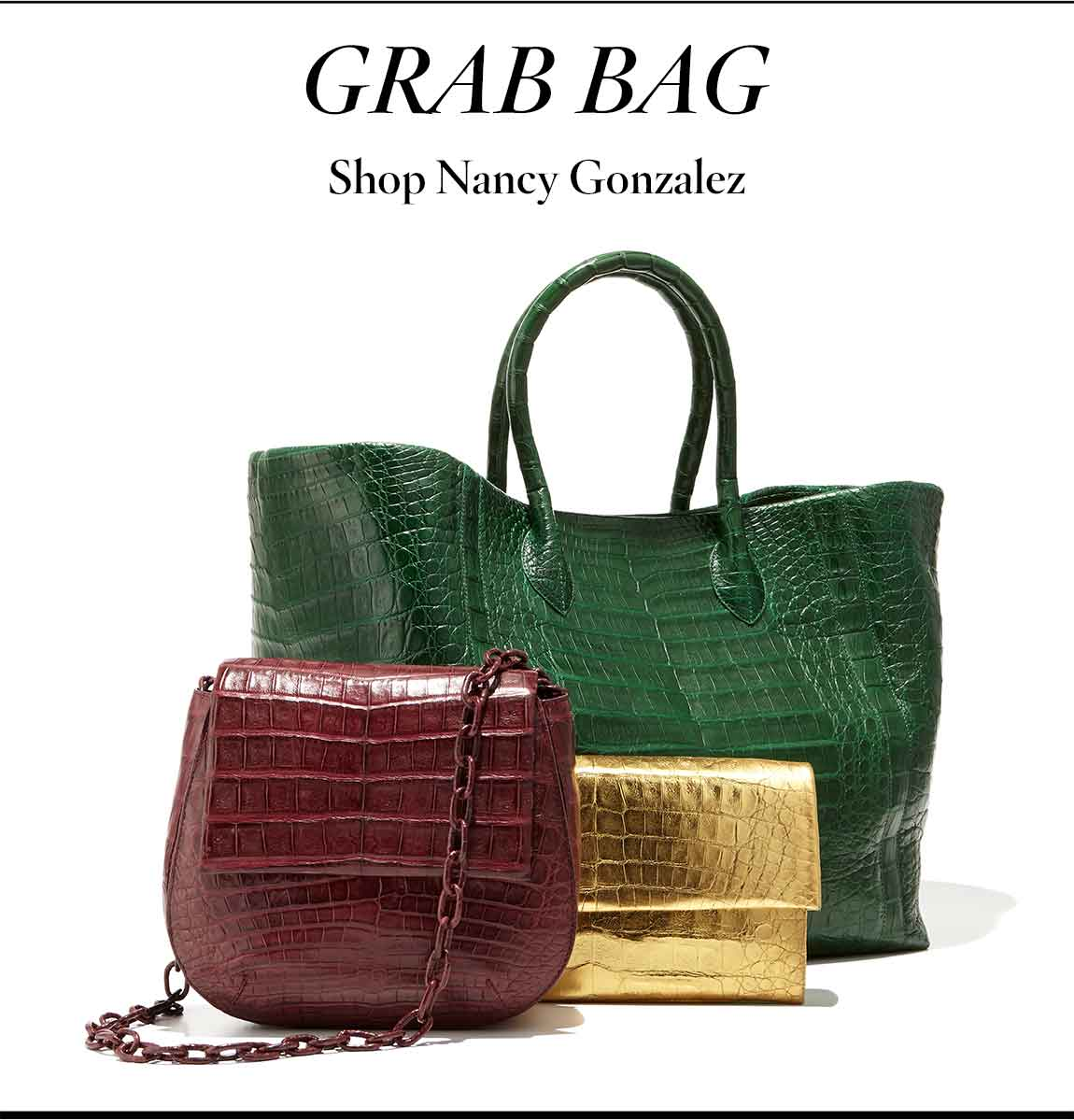 Nancy Gonzalez Jewel Bags