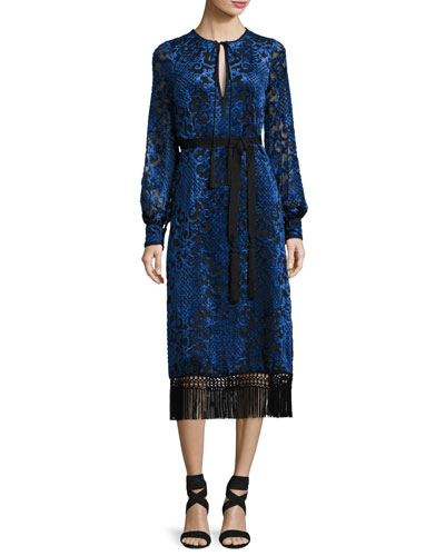 Long-Sleeve Velvet Devore Dress, Blue