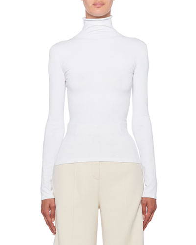 Dronia Fitted Turtleneck Sweater