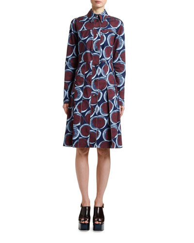 Circle Print Pleated Shirtdress