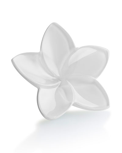 Baccarat Bloom Crystal Flower Decor, White