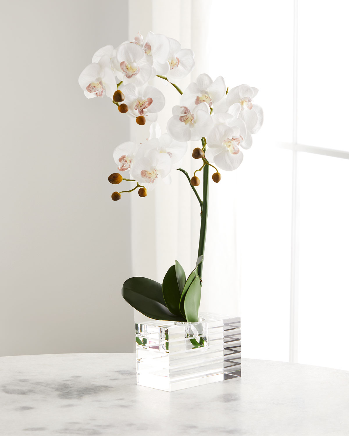 John-Richard Collection CRYSTAL CLEAR ORCHIDS