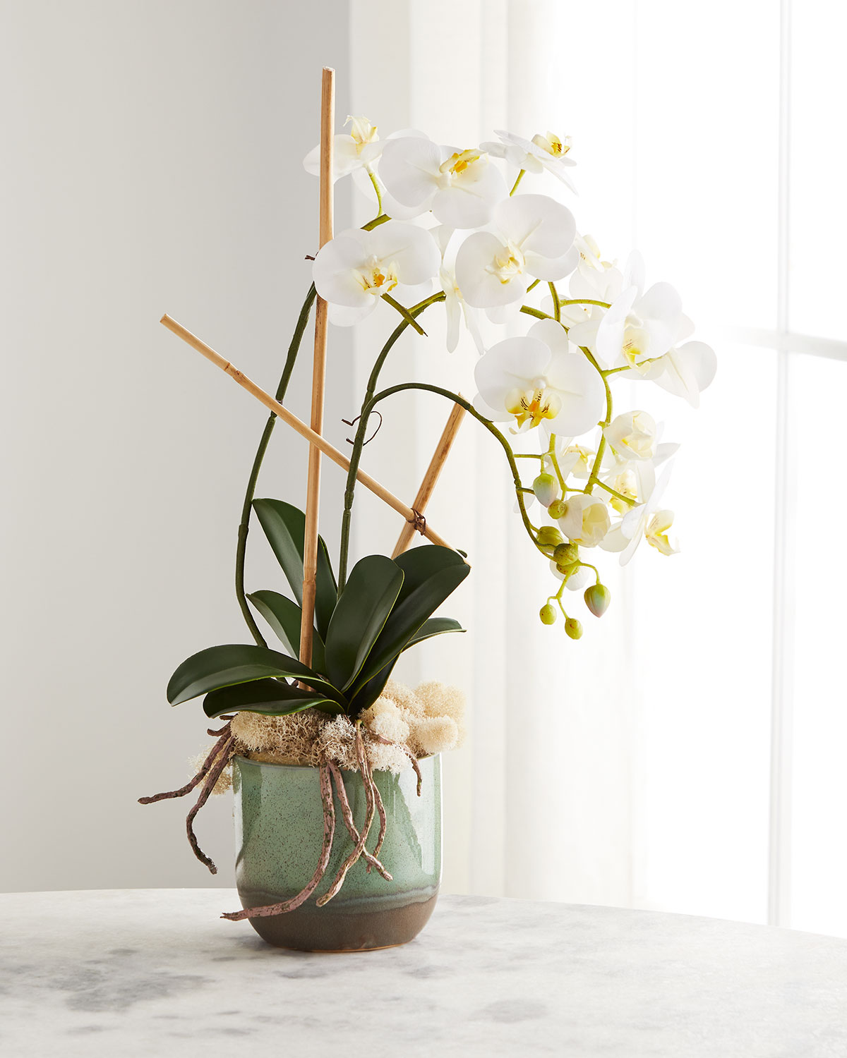 John-Richard Collection SEAFOAM PHALAENOPSIS