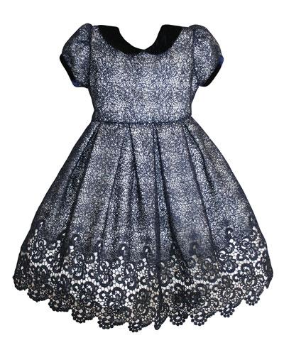 Floral Mesh Lace Velvet-Trim Dress, Size 2-8