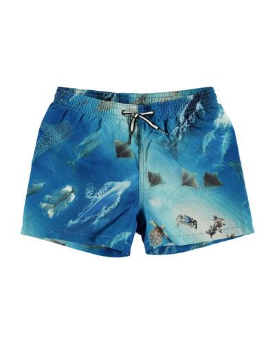 Boy's Niko Sea Print Swim Shorts, Size 2T-10