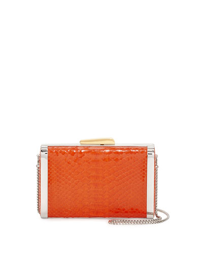 Framed Python Box Clutch Bag