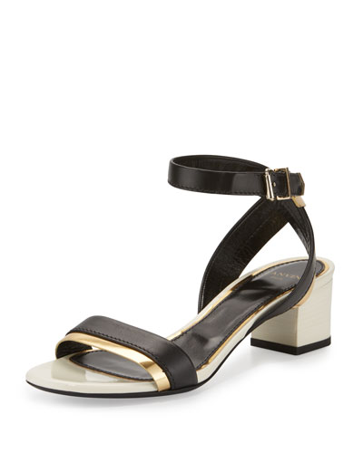 Mirror Cube-Heel 45mm Sandal, Black/Gold