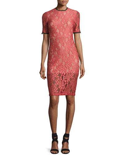 Remi Short-Sleeve Lace Sheath Dress, Pink