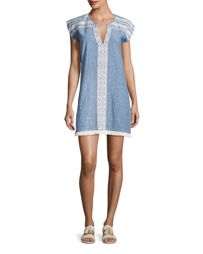 Natali Embroidered Mini Dress, Blue