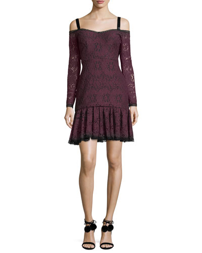 Sophia Off-the-Shoulder Long-Sleeve Lace Dress