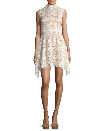 Izzy Sleeveless Floral Lace Fit-and-Flare Dress