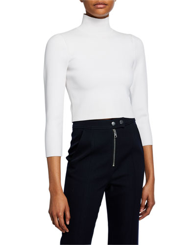 Gracie Cropped Turtleneck Top