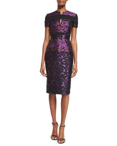 Short-Sleeve Floral Jacquard Sheath Dress, Mulberry/Black