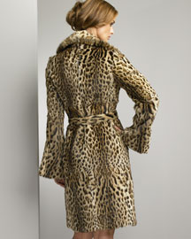 Pologeorgis        