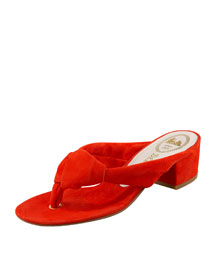 Delman sandals :  suede resort sandals