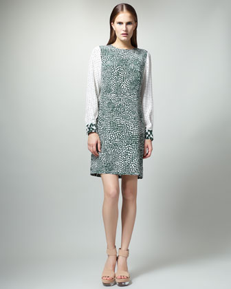 Printed Long-Sleeve Dress