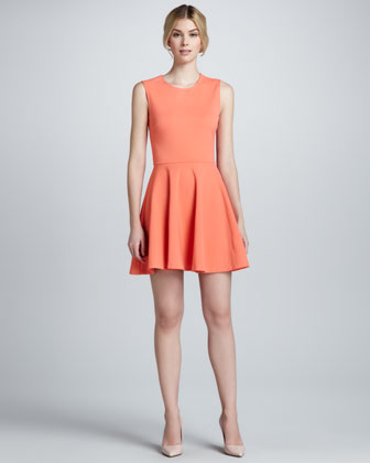 Jeannie Knit Fit-and-Flare Dress