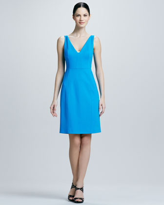Nessa Sleeveless Sheath Dress